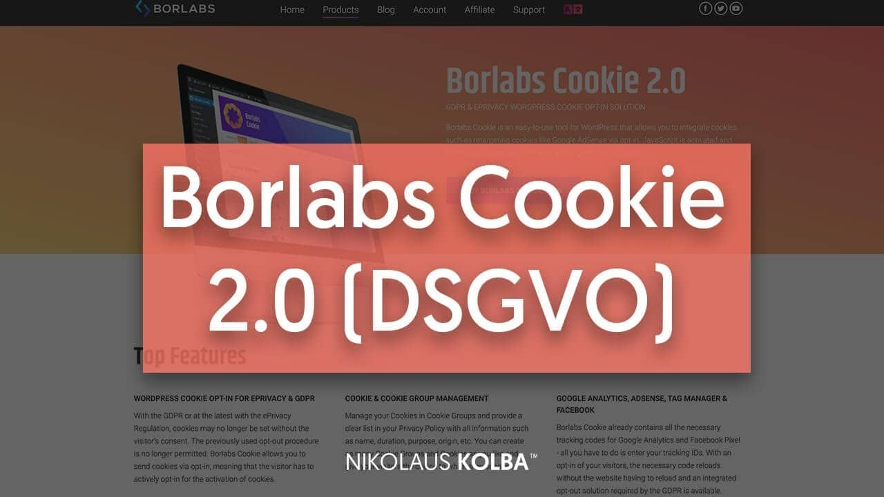 DSGVO Plugin - Borlabs Cookie 2.0 - Review & Tutorial
